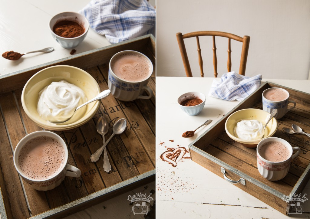 hot cocoa drink from the Taste of Memories countryside kitchen