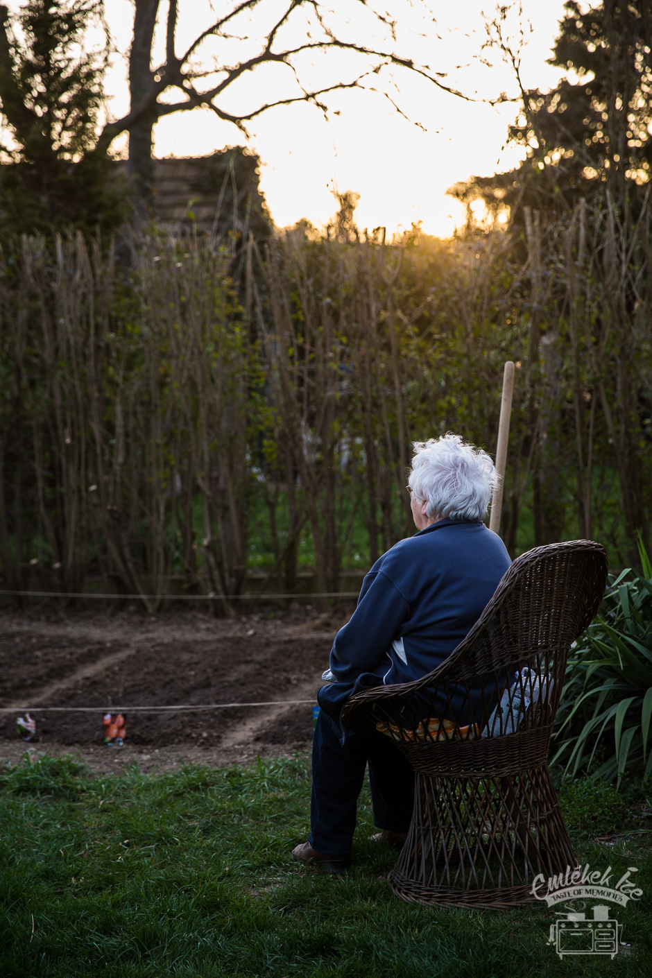 my grandmother and the kitchen garden